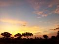 SunriseSatara
